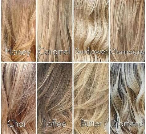 Different Types Hair Dye by 25 Best Hair Shades Ideas On