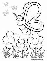 Coloring Garden Flower Pages sketch template