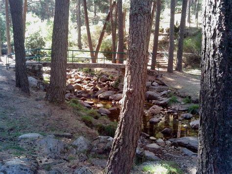 Que hacer con los pekes: La Panera El Espinar (Segovia)