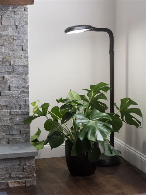 Floor Plant Lamp - Full Specrum CFL Grow Light | Free Shipping