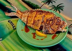 Lionfish Menu - Grills Seafood Deck & Tiki Bar