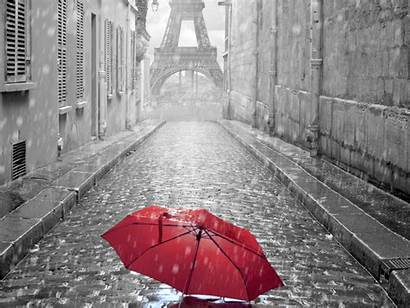 Paris Rainy Wallpapers Related Credits