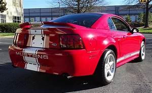 Ford Mustang Cobra SVT. Un deportivo del 99 - Motor 16