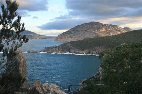 Currawong Coles Bay   Hobart