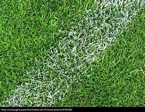 M Net Kundenportal Rechnung Online : fu ball rasen nahaufnahme soccer grass close up lizenzfreies foto 4762380 bildagentur ~ Themetempest.com Abrechnung