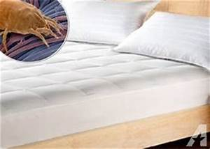 mattress steam cleaning bed bugs in menifee california With clean bed bugs from mattress