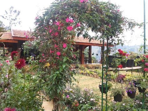 ella flower garden resort picture of ella flower garden
