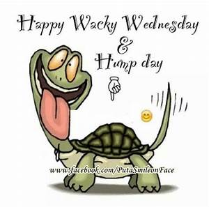 Happy hump day!!!   Wednesday Quotes°••   Pinterest