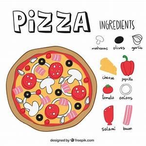 Pizza ingredients Vector | Free Download