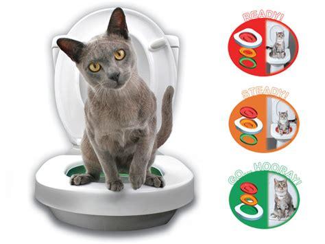 un kit pour apprendre 224 chat 224 faire aux toilettes topito