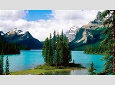 Canadian Wildlife Wallpaper WallpaperSafari