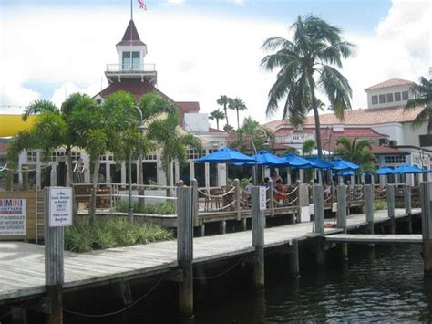 Boat Grill Restaurant by Cay Sal Grouper Picture Of Bimini Boatyard Bar Grill
