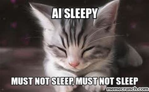 Sleepy Meme - sleepy cat memes image memes at relatably com