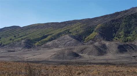pasca kebakaran bromo  kondisi terkini  gunung