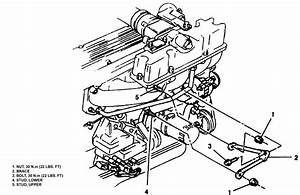 1996 Isuzu Trooper Alternator Wiring Diagram  Isuzu  Free