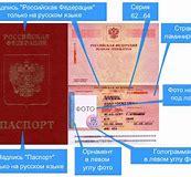 загран паспорт старого образца 2019