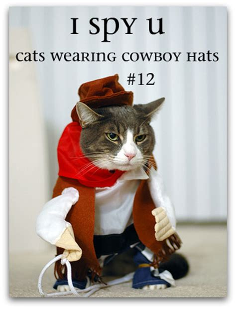 Wild west horse cowboy cat. Reviewing Notes: Books in the Year 3001 — @100scopenotes ...