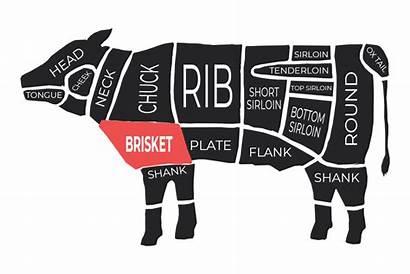 Beef Brisket Blade Cut Tender Bone Caring