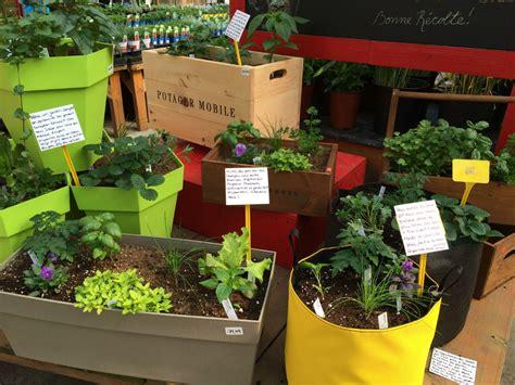 pot pour fines herbes potager et fines herbes cultiver en pot ferme b 233 dard blouin