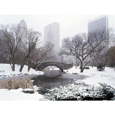 New York Central Park in Pictures - Pakistan Affairs