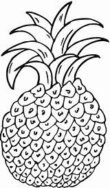 Pineapple Coloring Pages Pineapples Printable Clipart Hawaiian Matisse Print Clip Fruits sketch template
