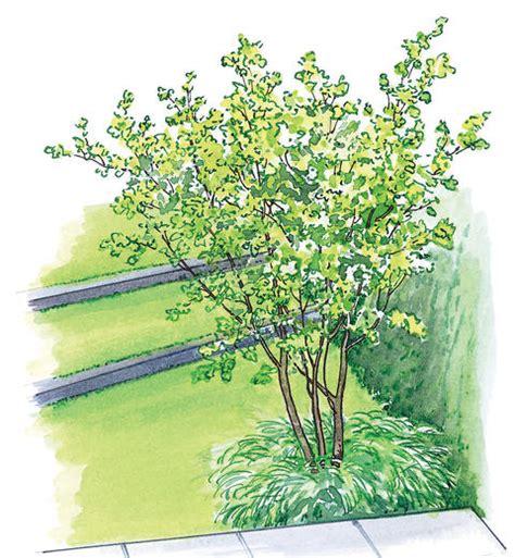 Doppelhaus In Japan by Gestaltungsideen F 252 R Einen Doppelhaus Garten Mein