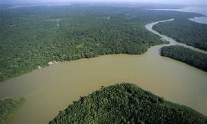 Tour Amazon Rainforest Full viajes Peru