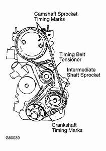 Set Timing Belt  Bmw 735 Timing Marks Diagram