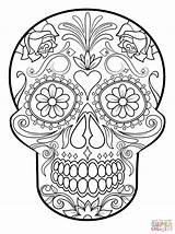 Skull Coloring Sugar Pages Printable Sheets Mandala Colouring Supercoloring Ausmalbilder Scull sketch template