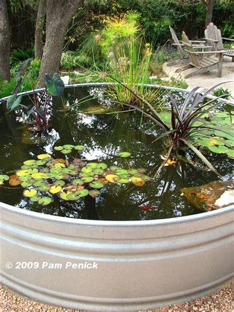 stock tank pond bebe nice variety  water