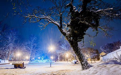 Park Bench Winter Snow Lamp Light Post Trees Sky Wallpaper