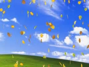 3D Falling Leaves Screensaver Free Download