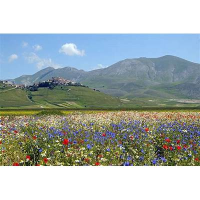 Castelluccio a photo from Perugia UmbriaTrekEarth