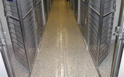 Dog Care Facility Floor Epoxy Coating with Decorative