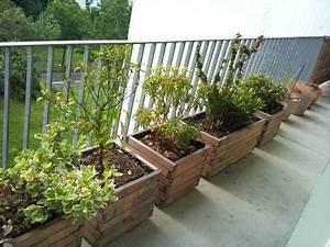 Plantes Et Fleurs Pour Balcon : fleurs aromates que planter sur son balcon au printemps ~ Premium-room.com Idées de Décoration