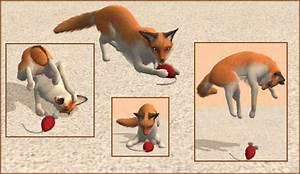 Mod The Sims - VulpeCat - half fox, half cat, all awesome!