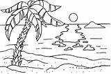 Coloring Pages Palm Tree Beach Florida Trees Beaches Summer Colors Sunset Ocean Sunsets Palms Quilts Embroidery sketch template