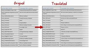 how to take your e learning global with studio 13 With document language translation software
