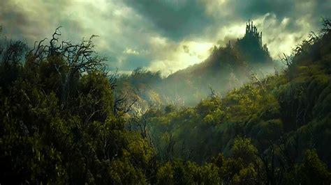 waldlandschaft   hintergu wunderschoene tierwelt