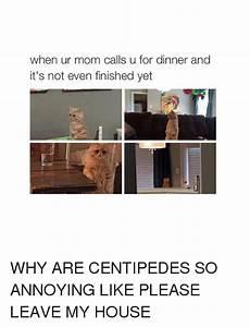 25+ Best Memes About Moms | Moms Memes