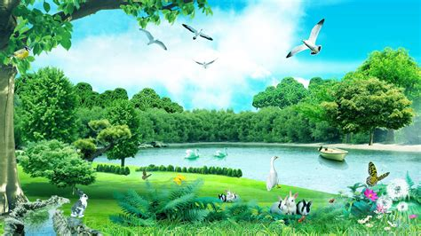 nature animals forest hd wallpaper background images