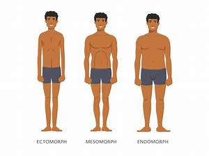 3 Main Body Types Of Men And How To Tell Them Apart