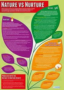 Learning Theories Chart Psychology School Poster Nature Vs Nurture