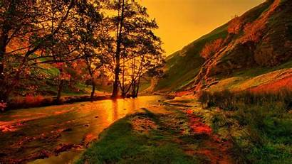 Fall 3d Autumn Leaves Nature Forest Wallpapers