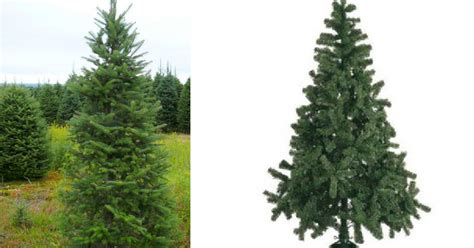 man arboles de navidad 191 natural o artificial