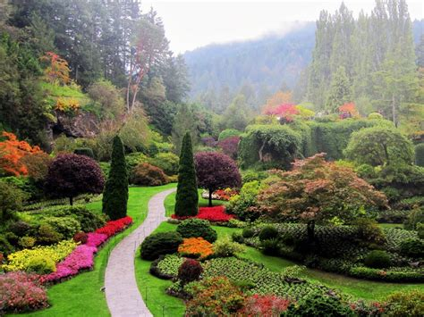 outdoor garden photos gardens victoria island canada panoramio photo of butchart gardens victoria island bc