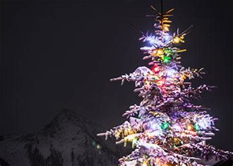 tree light up nightgunnison crested butte