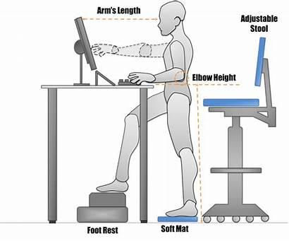 Desk Standing Stand Sitting Ergonomics Workstation Office