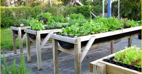 wheelchair accessible raised garden beds accessible
