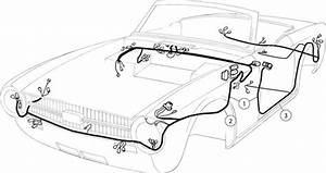 Triumph Tr6 Wiring Harness